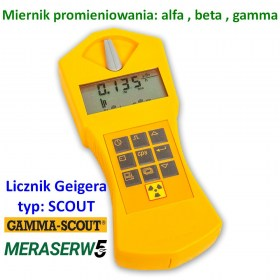 Scout standard